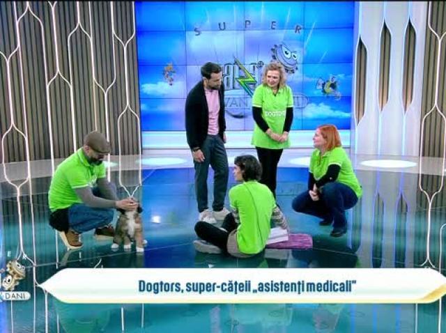 """Primii cățeii """"asistenți medicali"""" din România, la Neatza. Cum sunt dresați"""