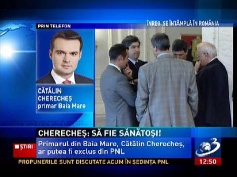 Cătălin Cherecheş: Mă interesează să fiu un excelent primar, nu un obedient om de partid