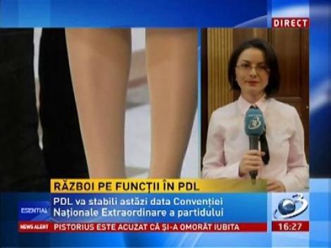 Război pe funcții în PDL între Blaga și Udrea