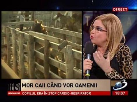 Cristina Ţopescu, despre cazul cailor de la Letea