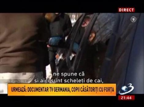 Sinteza Zilei: Anchetă şocantă făcută de germani! Pe urmele mafiei cărnii de cal din România