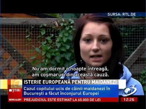 Isterie europeană pentru câinii maidanezi