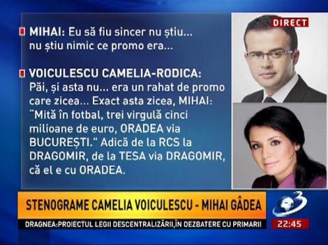 Sinteza Zilei: Proba cheie a procurorilor, o banală discuţie de afaceri între Mihai Gâdea şi Camelia Voiculescu