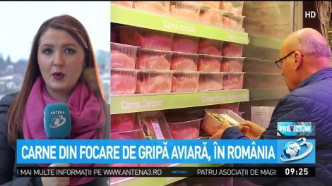 Carne din focare de gripă aviară, în România. Din 17 tone ajunse în magazine, au fost recuperate doar 38 de kilograme