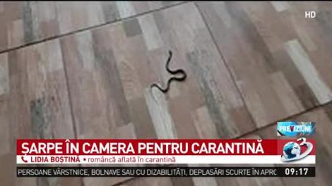 """Lidia, o româncă întoarsă din străinătate, revoltată de condițiile de cazare în carantină: """"Am găsit un șarpe în cameră!"""""""
