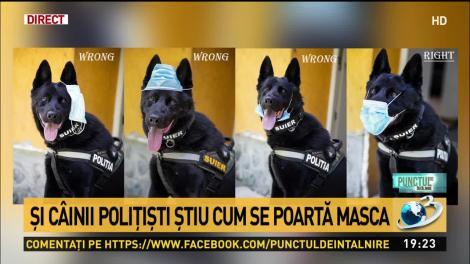 """""""Dacă Șuier poate, și noi putem!"""" Cel mai simpatic membru al Poliției Capitalei ne învață cum trebuie să purtăm masca"""