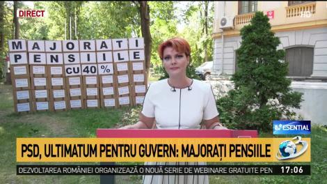 Lia Olguţa Vasilescu: Guverul nu a recalculat pensiile