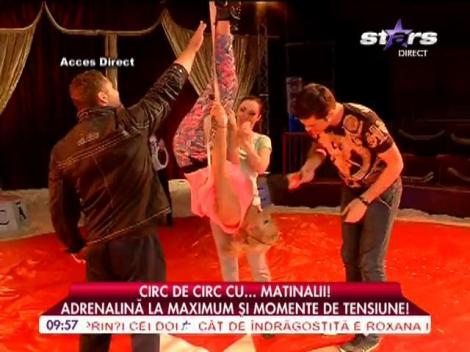 Matinalii au mers la circ