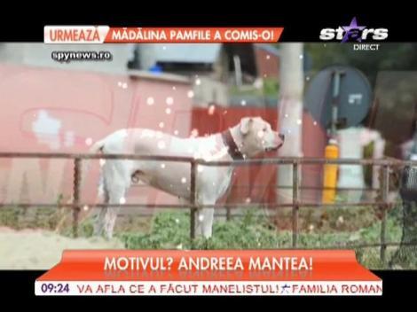 Cristi Mitrea, iubitul Andreei Mantea, își neglijează cel mai bun prieten