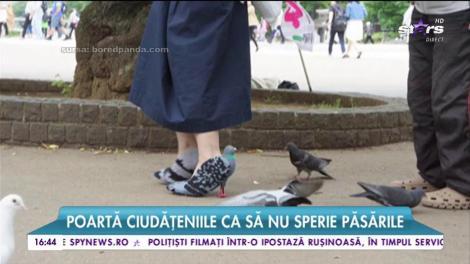 Şoc sau uimire? Pereche de pantofi în formă de porumbei