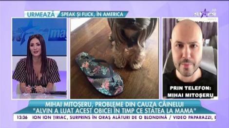 Mihai Mitoșeru a rămas fără pantofi din cauza câinelui