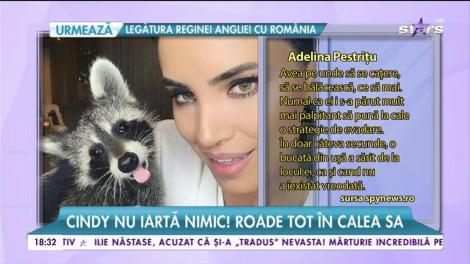Adelina Pestriţu nu mai are linişte! S-a trezit în plină zi cu ușa spartă!