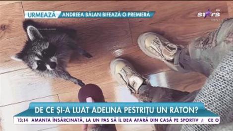 Adelina Pestrițu nu mai doarme singură! Iată cu cine își împarte bruneta casa!