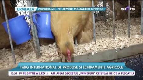 Târg internațional de produse și echipamente agricole