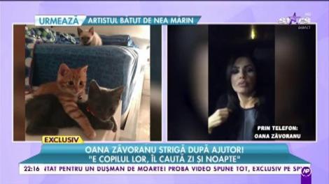Oana Zăvoranu strigă după ajutor! Vedeta oferă recompensă celui care o poate salva