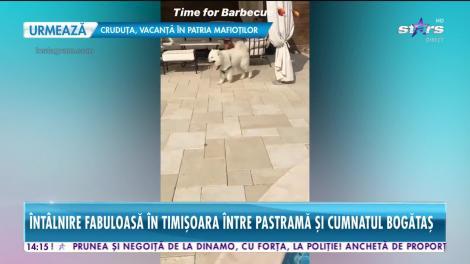 Legăturile din familia Pastramă au ieșit la iveală!